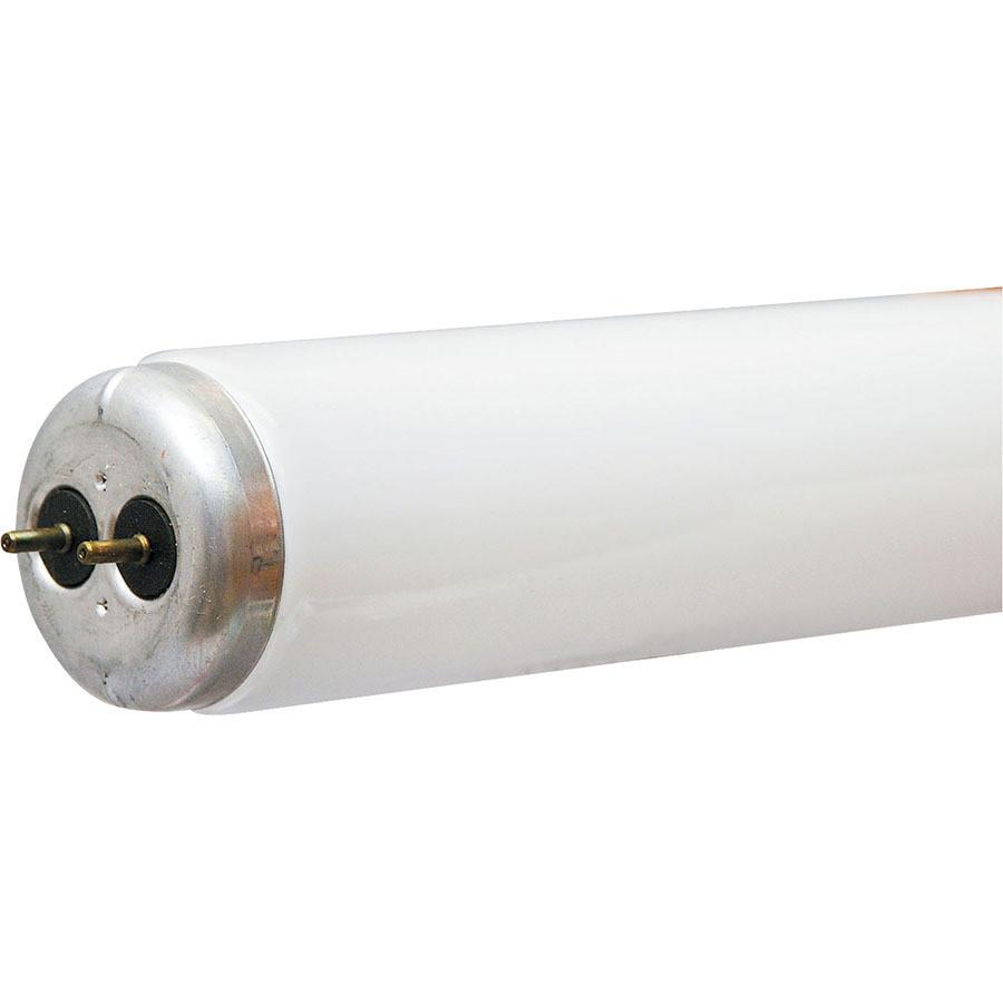 30-Pack 32-Watt 4,100K Cool White Fluorescent Tube Light Bulbs (Common: 48-in; Actual: 48-in)