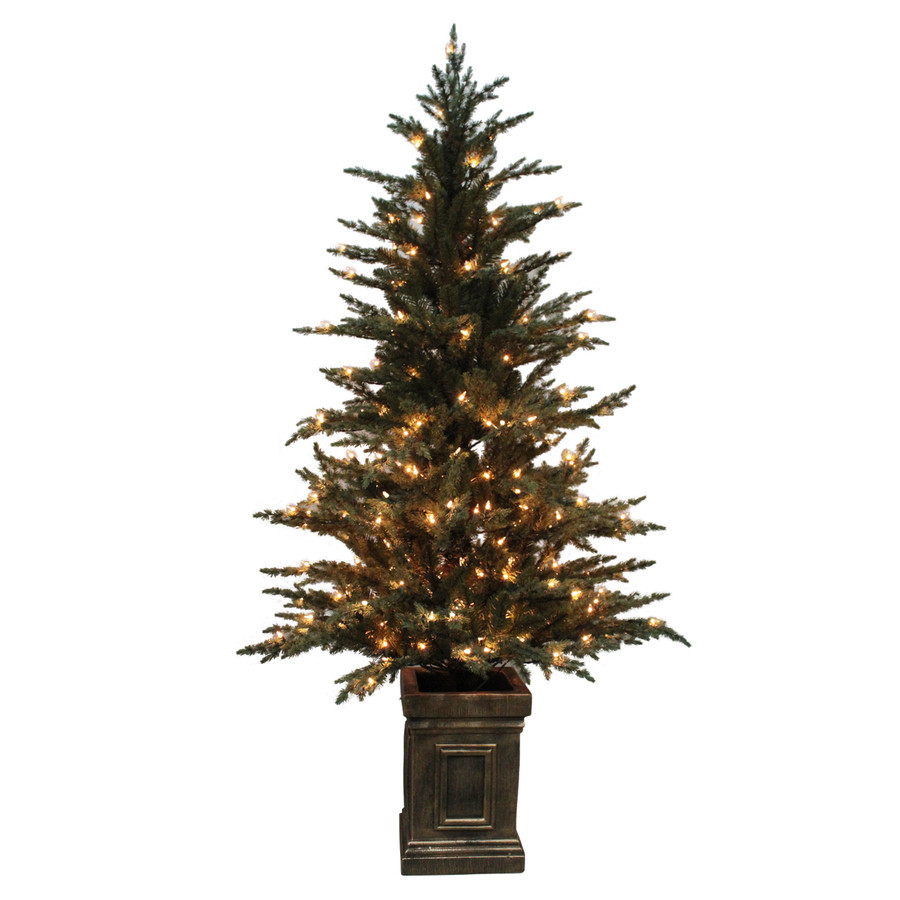 5.5-ft Pre-Lit Serbian Spruce Full Rightside-Up Artificial Christmas Tree White Clear Incandescent Lights
