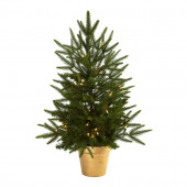 2.5-ft Pre-Lit Artificial Christmas Tree with White Clear Incandescent Lights