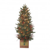5-ft Pre-Lit Aspen Fir Artificial Christmas Tree with Clear Incandescent Lights